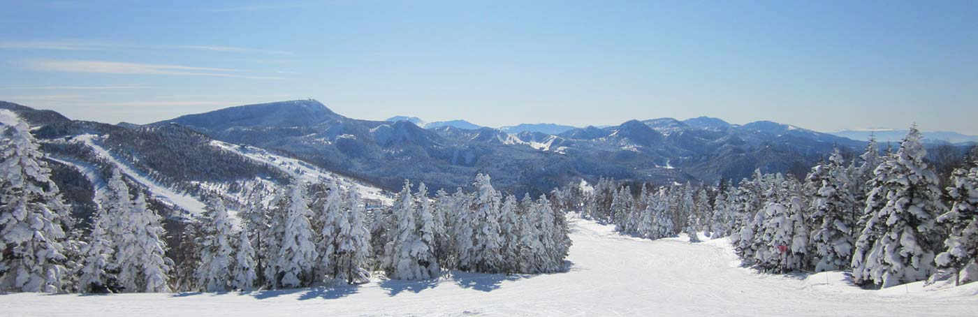 雪質抜群の冬の志賀高原